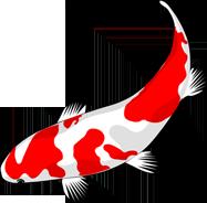 Bildergebnis für koi logo
